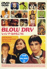 Blowdry_1
