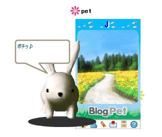 Pet002